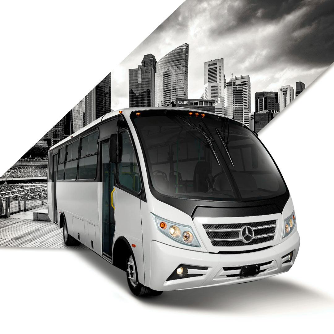 Autobuses y Vanes